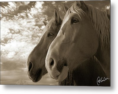 Smith And Wesson Metal Print by Christine Hauber