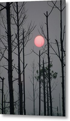 Metal Print featuring the photograph Smokey Sunset by Dodie Ulery