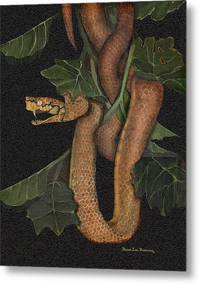 Snake Of No Kind Metal Print by Karen-Lee