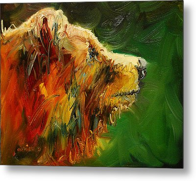 Sniffing For Food Bear Metal Print by Diane Whitehead