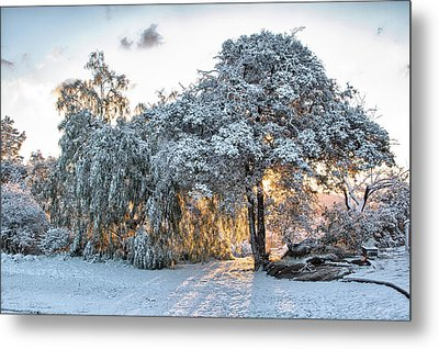 Snow At Sunrise 1 Metal Print