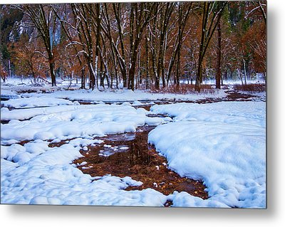 Snow Covered Field And Trees Metal Print by Garry Gay