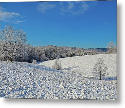 Snow Covered Pasture Metal Print