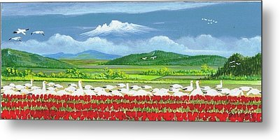 Snow Geese And Tulips Metal Print by Bob Patterson