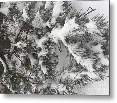 Snow In February Metal Print