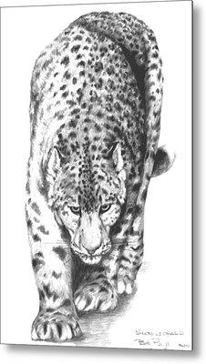 Snow Leopard Metal Print by Bob Patterson