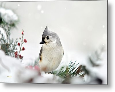 Metal Print featuring the photograph Snow White Tufted Titmouse by Christina Rollo