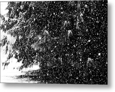 Metal Print featuring the photograph Snow by Yulia Kazansky