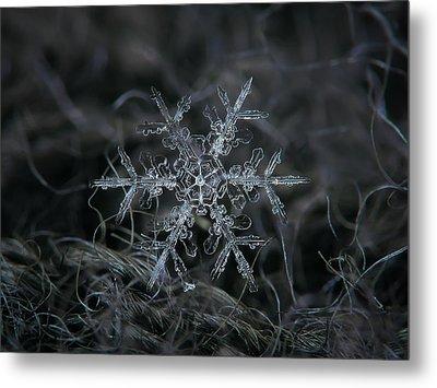 Snowflake 2 Of 19 March 2013 Metal Print