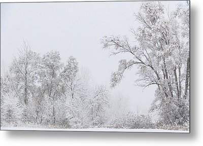 Snowing In A Starbucks Parking Lot Metal Print by Joni Eskridge