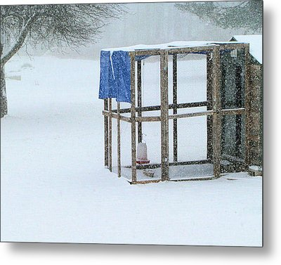 Metal Print featuring the photograph Snowy Hen House by Barbara Giordano