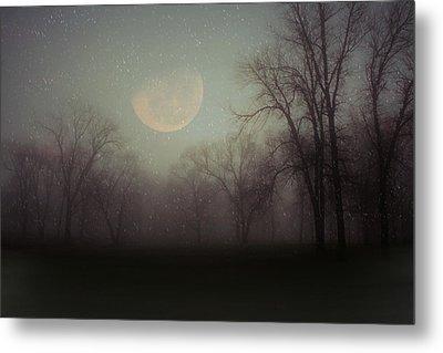 Moonlit Dreams Metal Print by Inspired Arts