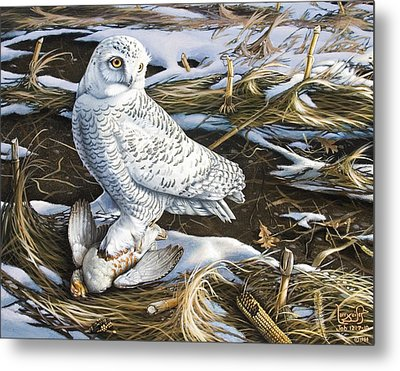 Snowy Owl And Hungarian Partridge Metal Print by Larry Seiler
