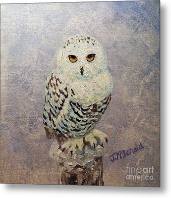 Snowy Owl Metal Print by Janet McDonald