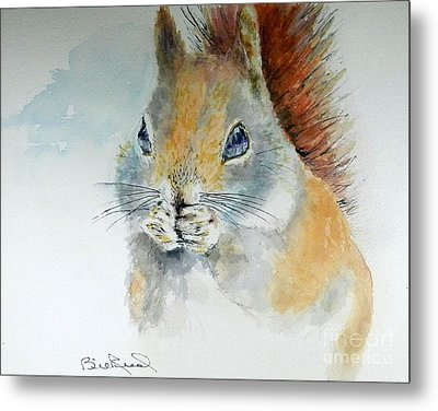 Snowy Red Squirrel Metal Print