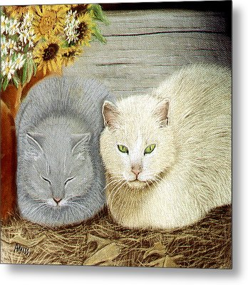 Soft And Fluffy Metal Print by Jan Amiss