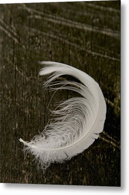 Soft Curve Two Metal Print by Odd Jeppesen