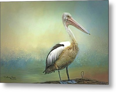 Metal Print featuring the photograph Solitary by Wallaroo Images