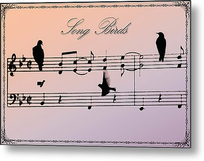 Songbirds With Border Metal Print