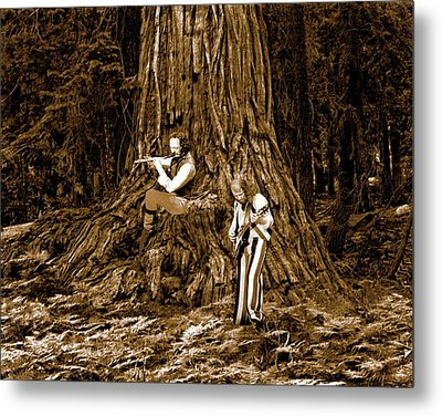 Metal Print featuring the photograph Songs In The Woods 2 by Ben Upham