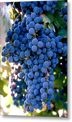 Sonoma Grapes Metal Print by Bart Edson
