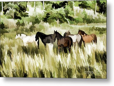 South Dakota Herd Of Horses Metal Print by Wilma Birdwell