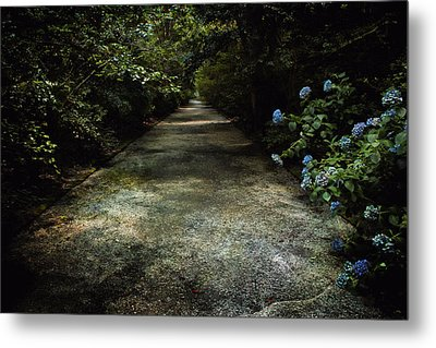 Metal Print featuring the photograph Southern Blue by Jessica Brawley