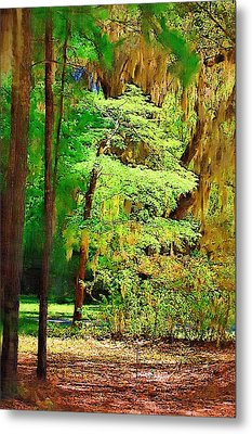Metal Print featuring the photograph Southern Forest by Donna Bentley