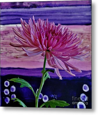 Metal Print featuring the photograph Spider Mum With Abstract by Marsha Heiken