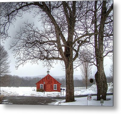 Spot Of Color Metal Print by Betsy Zimmerli