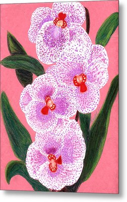Spotted Orchid Against A Pink Wall Metal Print by Carliss Mora