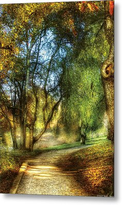Spring - Landscape - My Journey My Path Metal Print by Mike Savad