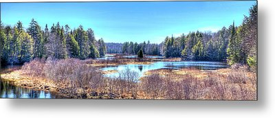 Spring Scene At The Tobie Trail Bridge Metal Print