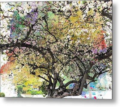 Spring Blooms Metal Print by Leslie Hunziker