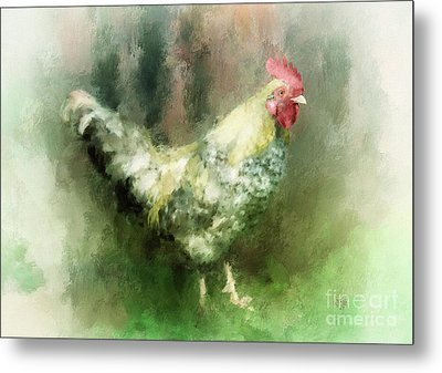 Spring Chicken Metal Print by Lois Bryan