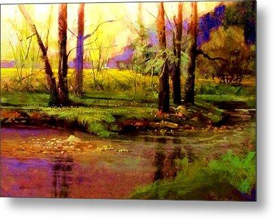 Spring Fields Along Sunlite Creek Metal Print by Joseph Barani
