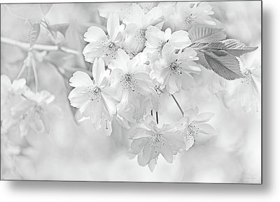 Metal Print featuring the photograph Spring Flower Blossoms Soft Gray by Jennie Marie Schell