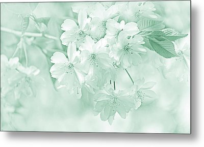 Metal Print featuring the photograph Spring Flower Blossoms Teal by Jennie Marie Schell