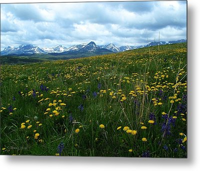Spring Flowers On The Front Metal Print