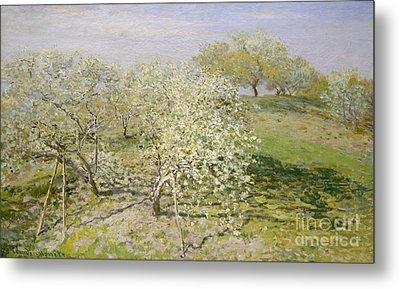 Spring, Fruit Trees In Bloom, 1873 Metal Print