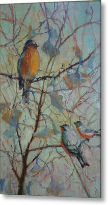 Spring Robin And Company Metal Print