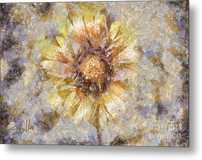 Spring Sunshine Metal Print by Shirley Stalter
