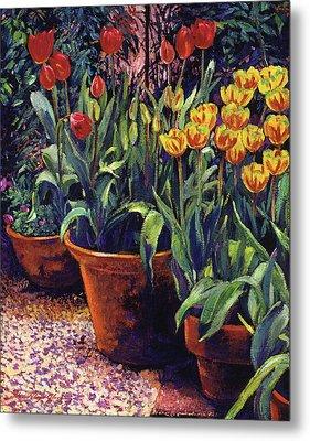 Spring Tulip Pots Metal Print by David Lloyd Glover