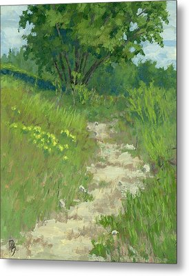 Spring Walk Metal Print by David King