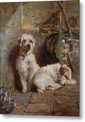 Stablemates Metal Print by John Fitz Marshall