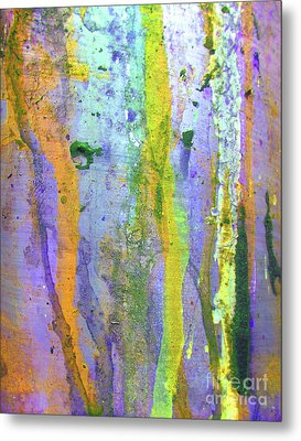 Stains Of Paint Metal Print by Carlos Caetano