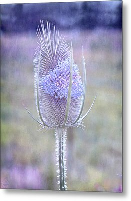 Metal Print featuring the digital art Stand Alone by Margaret Hormann Bfa