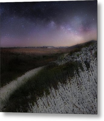 Metal Print featuring the photograph Star Flowers Square by Bill Wakeley