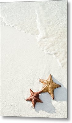 Starfish On Tropical Beach Metal Print