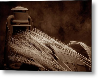 Still Life With Wheat I Metal Print by Tom Mc Nemar